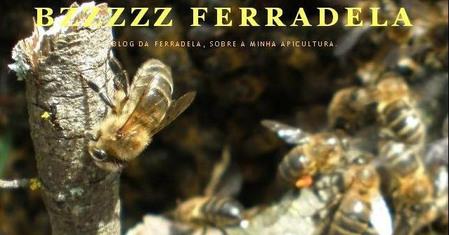 BzZzZz  Ferradela