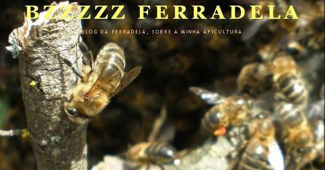 BzZzZz  Ferradela