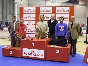 SPOT - Campeão Nacional 2006/07