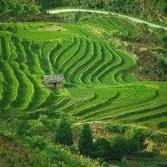 Indahnya Bali