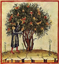 Tacuinum Sanitatis, Lombardía, finales del siglo XIV (Biblioteca Casanatensis, Roma).
