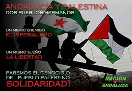 ¡PAREMOS EL GENICIDIO DEL PUEBLO PALESTINO!