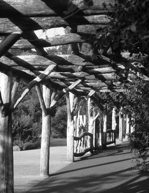 Wooden arbor in black and white