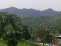 Panorama Hutan di Pahang