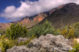 Click for Larger Image of the Guadalupe Mountains