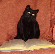 Tina, estudiant el grimori.