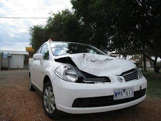 rental car after hitting kangaroo australia