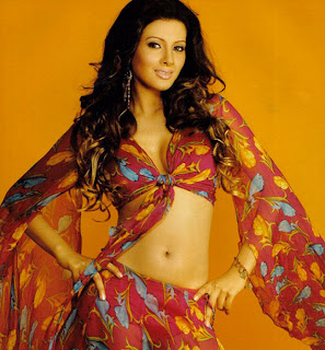 Geeta Basra Hot Photo