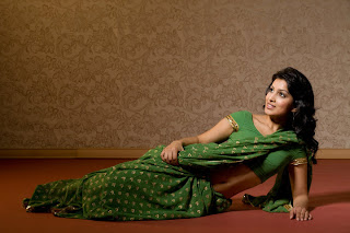 Pallavi Sharda hot in saree