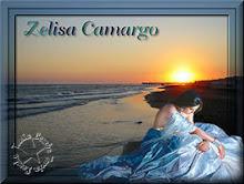 """Formatação do poema de Zelisa Camargo, """"Enovelada Estou""""."""
