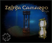 """Formatação do poema """"Tempo sem Tempo"""" - Zelisa Camargo."""