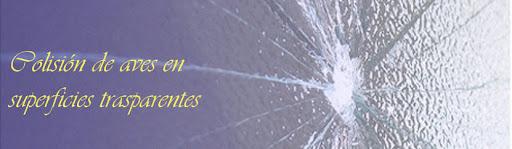 Colisiones de Aves en superficies trasparentes