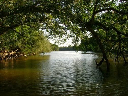 ... diz a escritura do seu interior fluirão rios de água viva jo 7 38