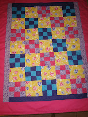 Checkboard and Ladybugs Baby Blanket