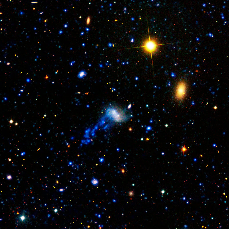 IC 3418 Galaxy's Tail In Ultraviolet Light