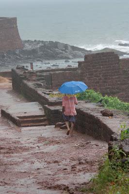 Rain hit path right next to the Tata Indian Hotels Resort 5 star resort in Goa