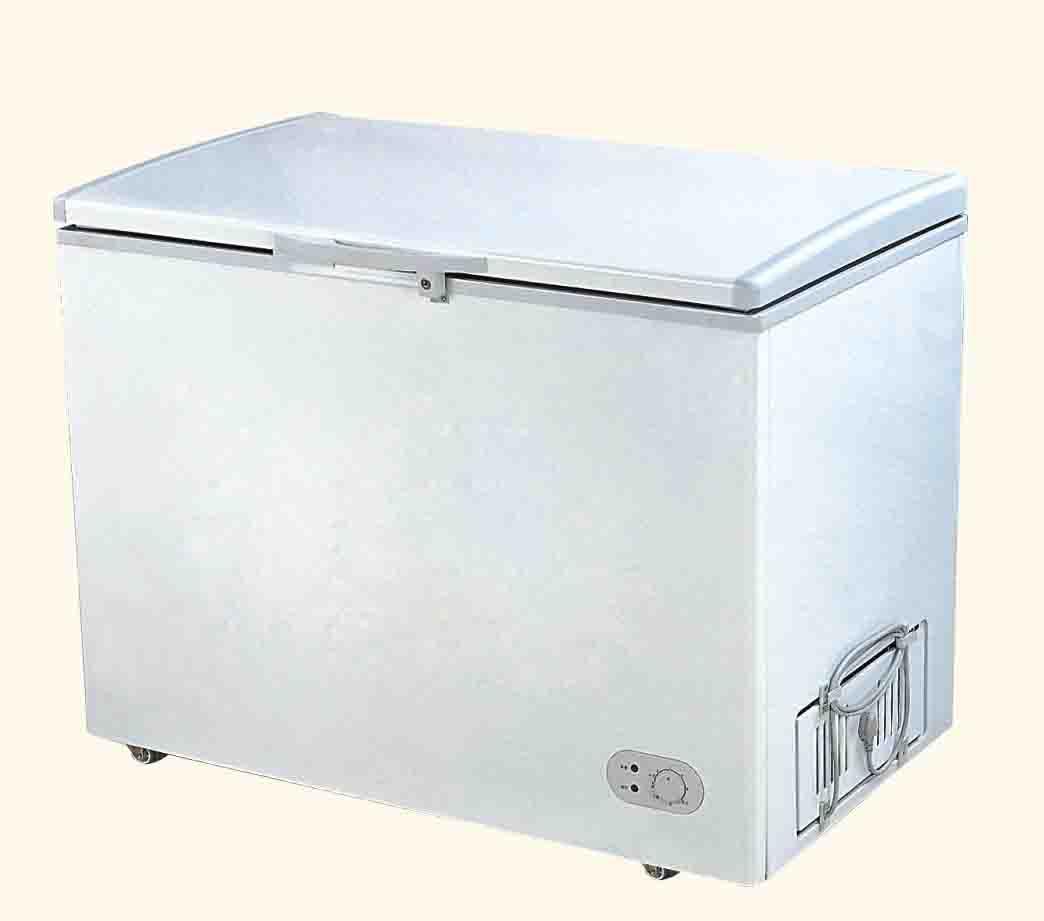 http://2.bp.blogspot.com/_RaOrchOImw8/TIhNBQe2oCI/AAAAAAAAm74/vibHqnX3k6Y/s1600/Chest-Freezer-300-Liters-BD-300-.jpg