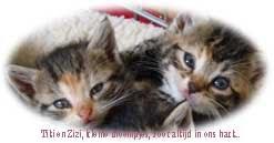 Titi en Zizi