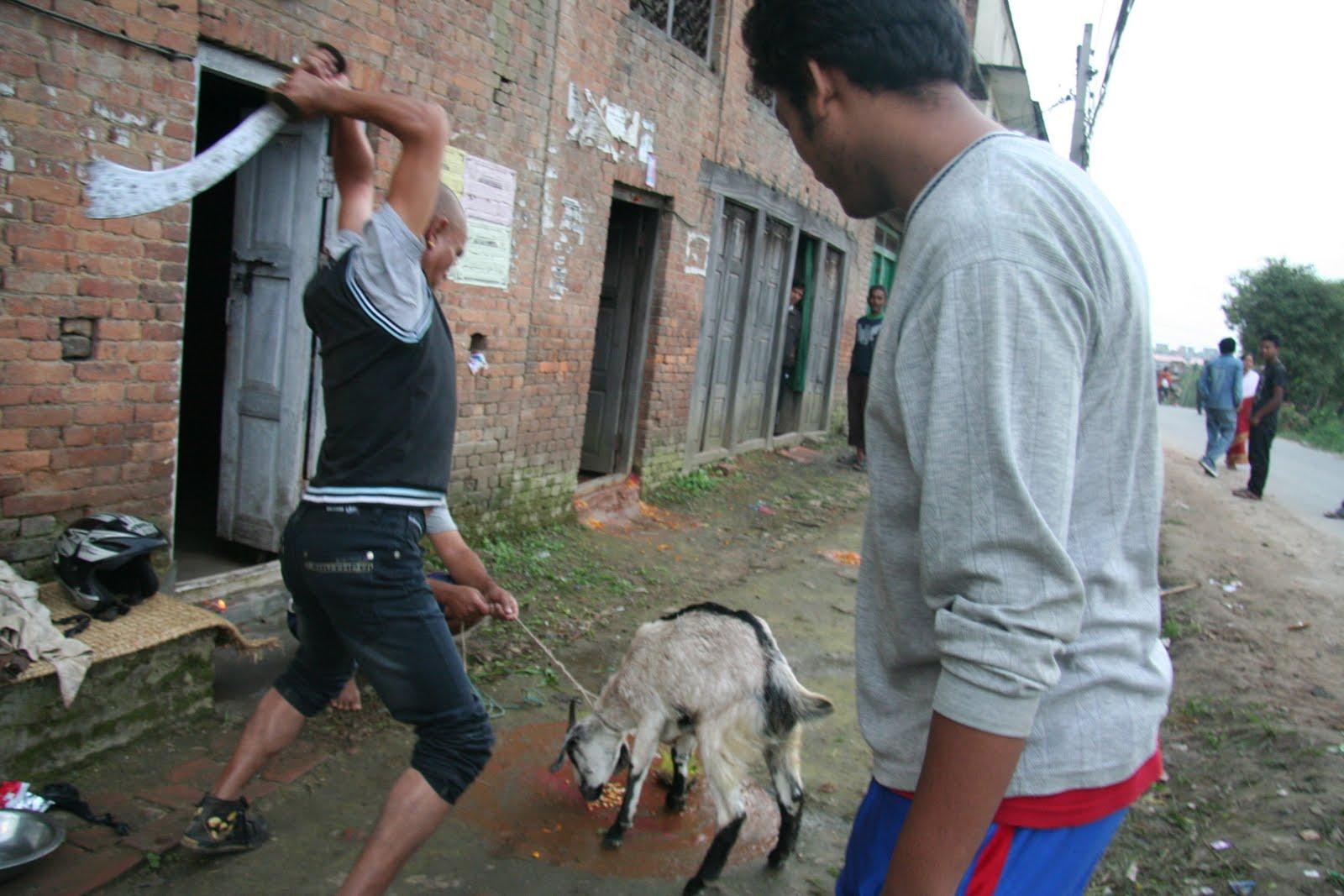 essay on dashain festival in nepali language