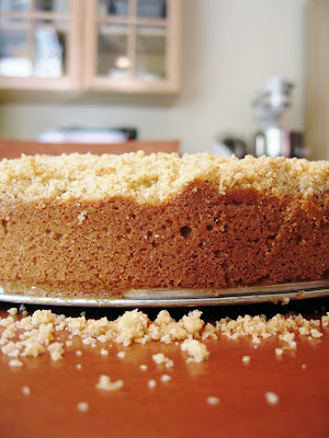 Babbo Modenese Crumbly Cake