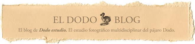 El Dodo-blog