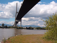 Under the Alex Fraser Bridge