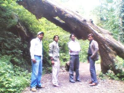 Waqas,Asif,Usman,Shahzad
