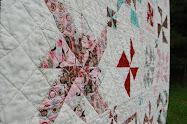 Blush Pinwheel Sampler