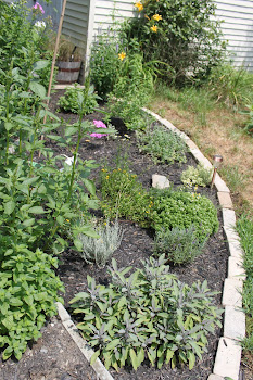 Better photo of 2010 Herb Garden
