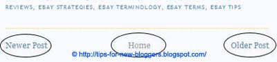 Remove Older Post and Posts (Atom) Links