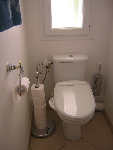 douchette wc turc. Black Bedroom Furniture Sets. Home Design Ideas
