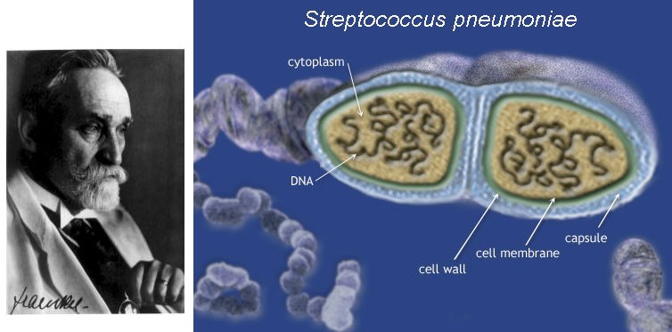 Microbiologos ilustres