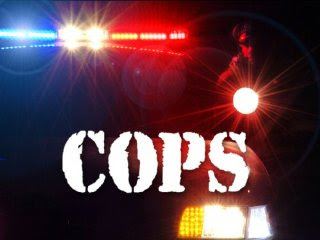 Watch Cops Season 22 Episode 18