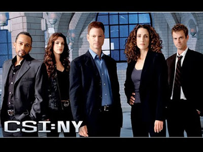 Watch CSI NY Season 6 Episode 6