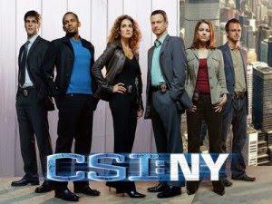 Watch CSI NY Season 6 Episode 10