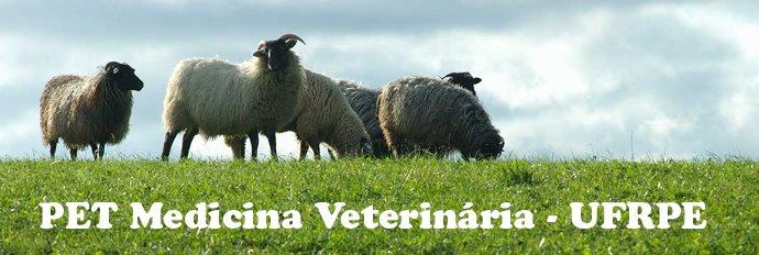 PET Medicina Veterinária - UFRPE