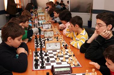 PIONUL FERMECAT-TURNEU DE SAH RAPID 29-01-2011.ORIZONT 64
