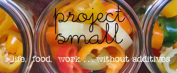 project small