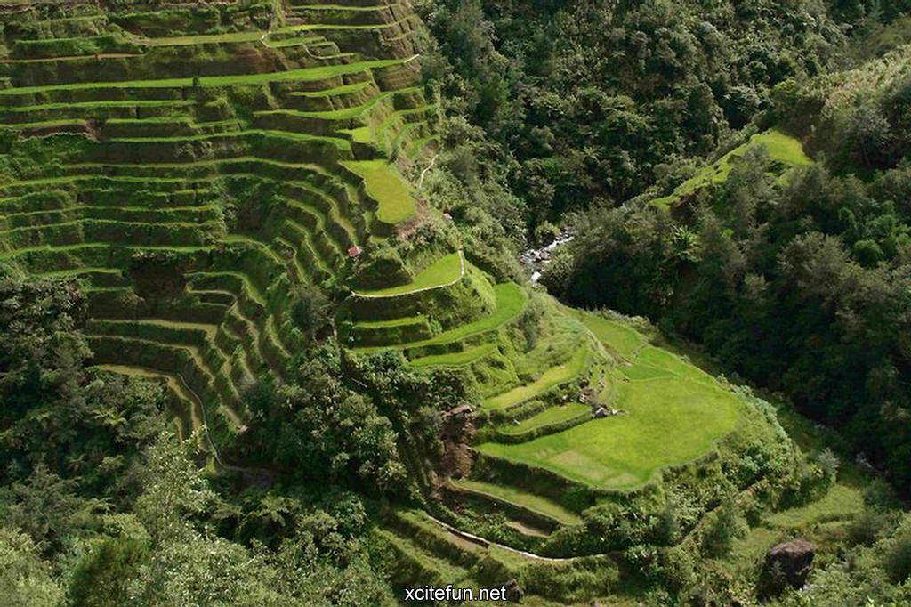 Banaue rice terraces philippines cultural treasure for The terraces 2
