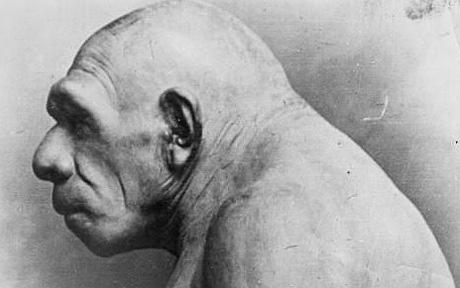 Снежные люди - это потомки неандертальцев?