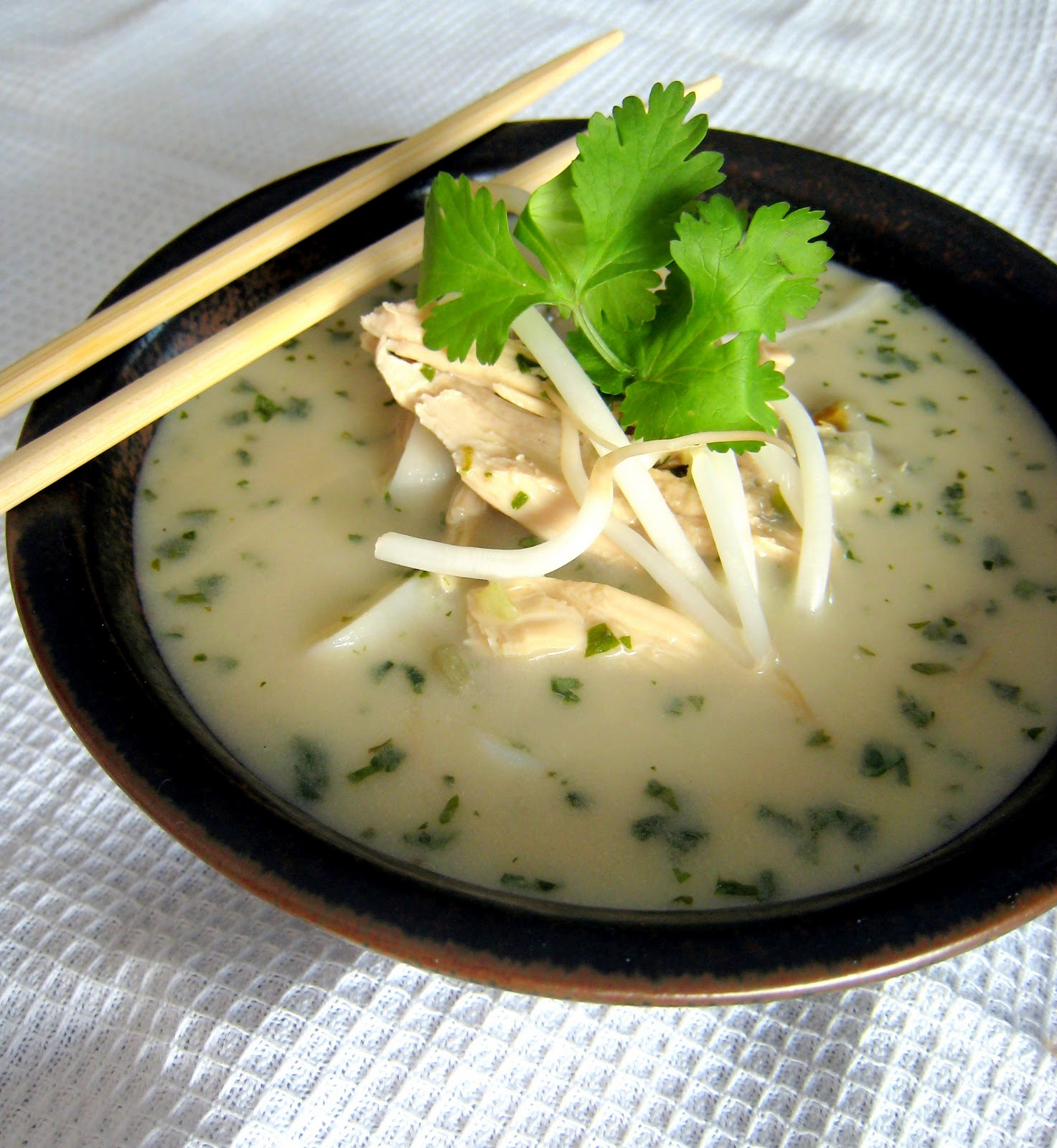 Vietnamese%2BChicken%2BNoodle%2BSoup%2BDorie (Democracy and Education, 1916; MW 9:8 9)