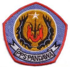 pps pandawa mojosari ( wonogiri)