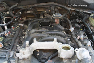 2002 Ford Mustang GT Engine