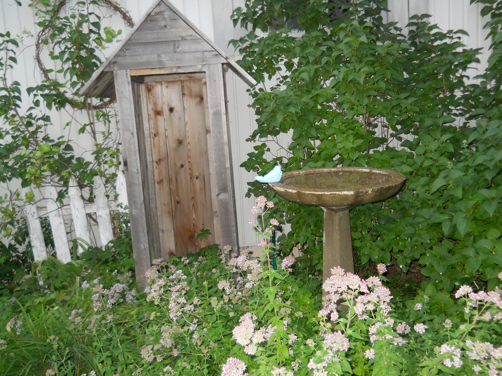 Lakehouse: Vintage bird bath