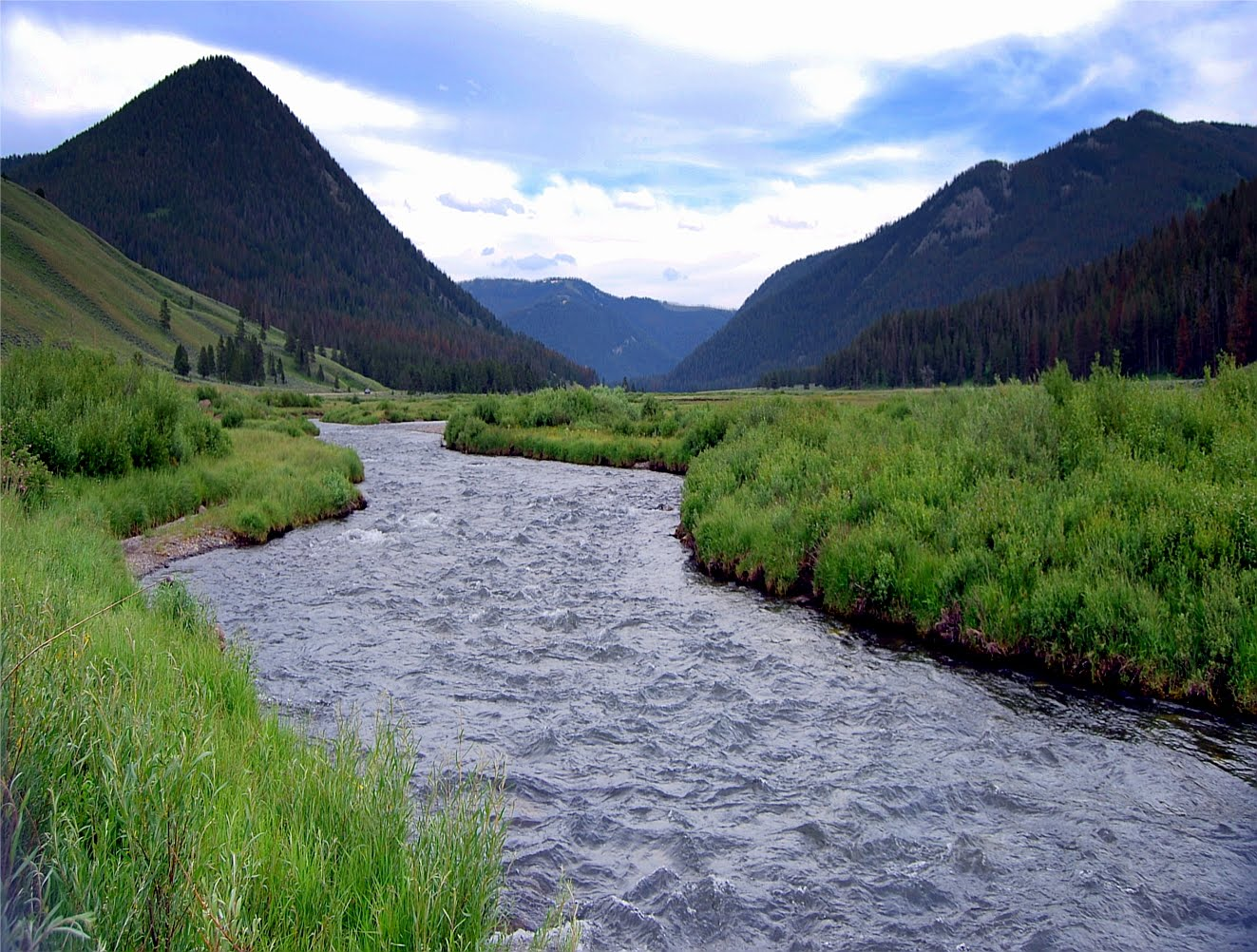 Fly fishing in yellowstone national park about that time for Fly fishing yellowstone