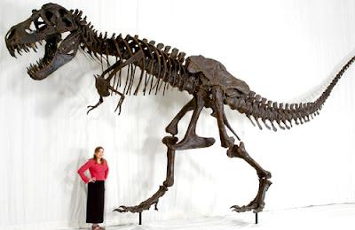 Esqueleto del tiranosaurio