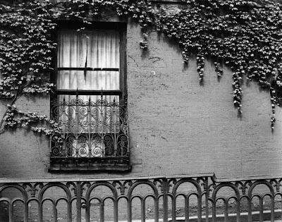 هـَــــــكذا ...... حيـــــــنَ Window.jpg
