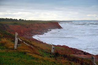 Red Cliffs on the shore