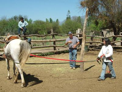 Katia dirigiendo un caballo con riendas largas ante Martín Hardoy
