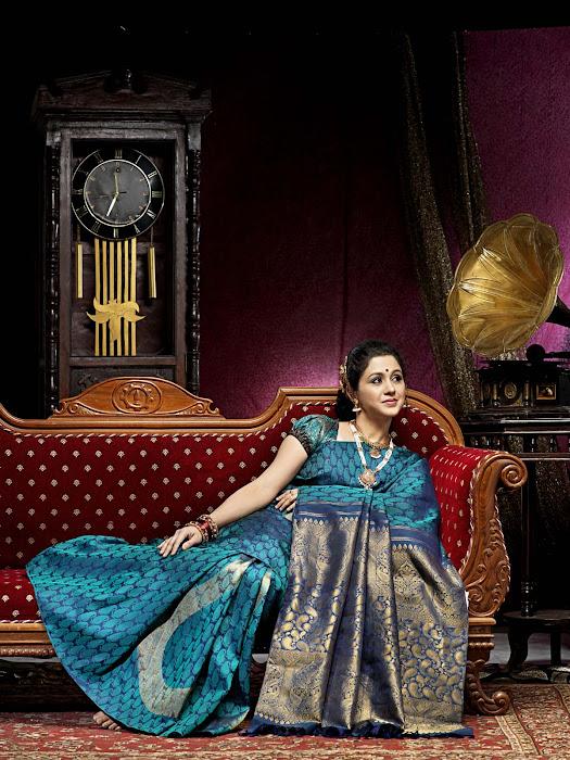 devayani in saree actress pics